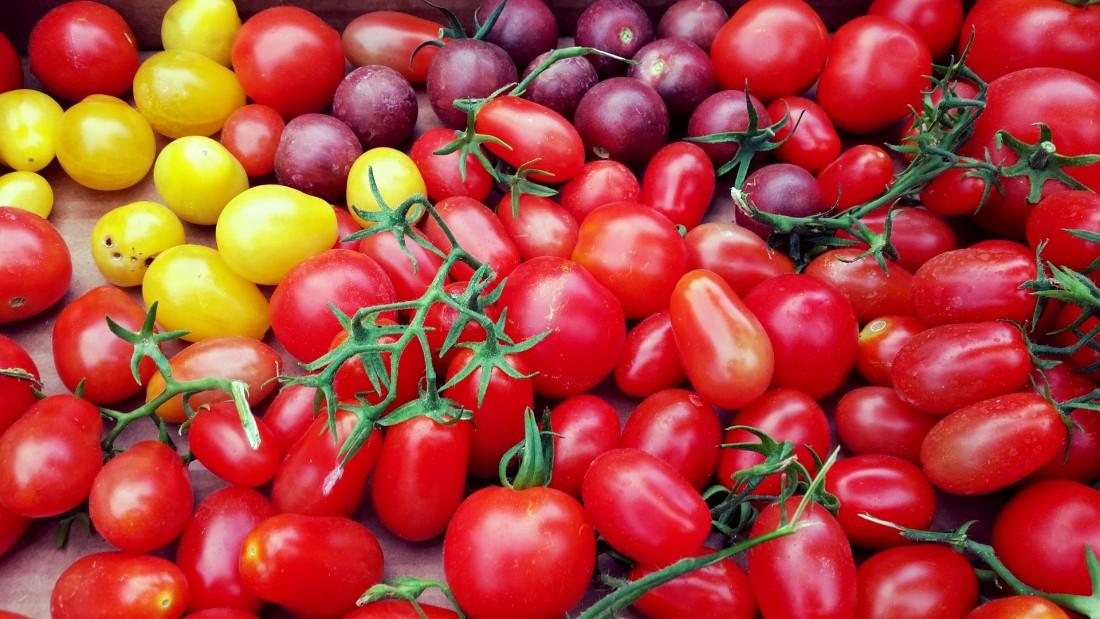 Tomates de diferente svariedades
