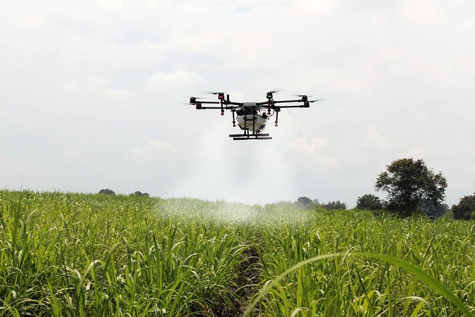 ¿Lo sabías? El IoT está revolucionando el sector agro